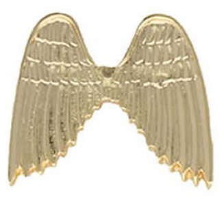 Angel wings pin gold without glitter