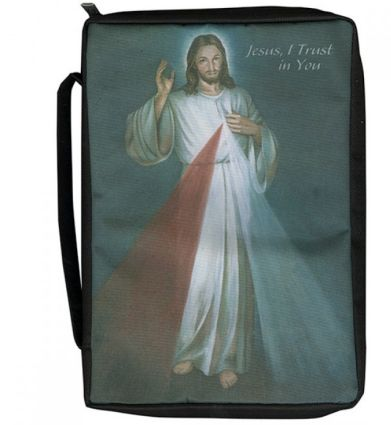 Divine Mercy Canvas Bible Cover Large