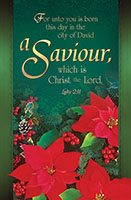Saviour Christmas Bulletin (Pkg of 100)
