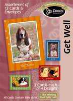 Furry Friends: Bible Verse Get Well Cards (Box of 12)