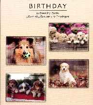 Playful Pals Birthday Boxed Cards -12 Pack