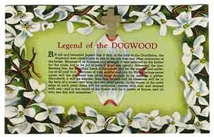 Dogwood Flower Cross Post Card
