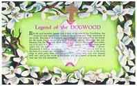 Dogwood Cross and Card