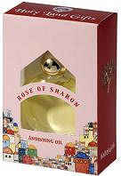 Rose of Sharon Anointing Oil for Praying
