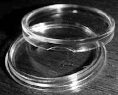 Clear Plastic Coin Display Capsules (Pkg of 12)