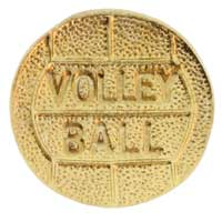 Volleyball Pin Gold