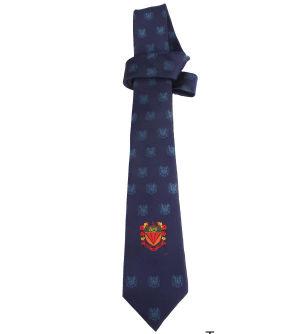 Custom Silk & Polyester Men's Ties (100 Min)