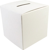 Donation Boxes Large 3 1/2  Blank Cardboard (50) White