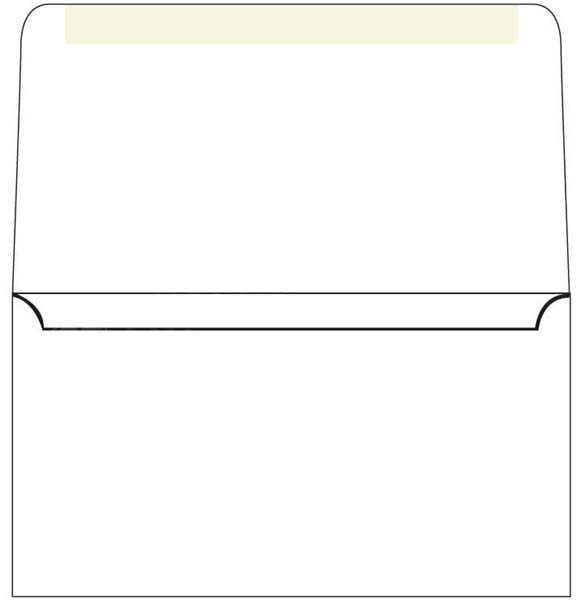 Blank, 6 3/4, white, church donation remittance envelopes.