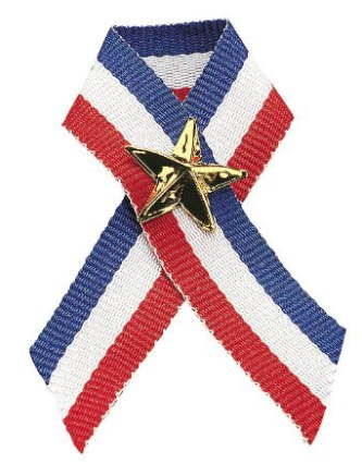 Red, White, Blue Ribbon & Gold Star Pin