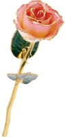 Lacquered 12 Inch Rose, 24kt Gold Trim Valentine's Day