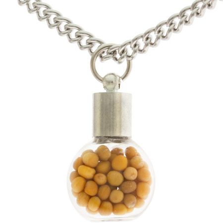 Tiny Glass Bottle Mustard Seed Necklace with Faith Charm