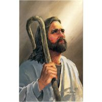 Jesus Postcards (Pkg of 50)