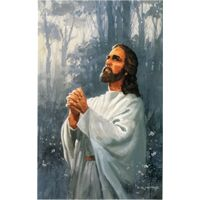 Jesus Praying Postcards (Pkg of 50)
