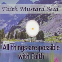 Faith Mustard Seed Pocket Cards (Pkg of 12)