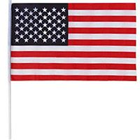 Fabric American Flag with Pole (12 x 18)