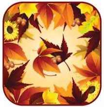 Fall Leaves Paper Party Plates (Pkg of 16)