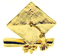 Graduation Pins Gold Mortarboard, Diploma