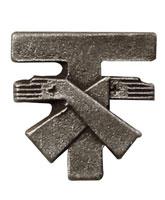 St. Francis Tau Cross Pin