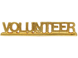 Volunteer Pin Gold Plated