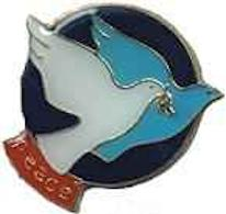 Twin Doves Peace Pin