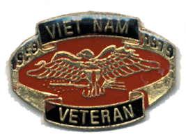 Vietnam Veteran Pin