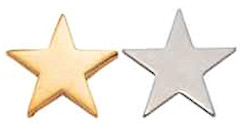Gold Star Lapel Pin for Recognition