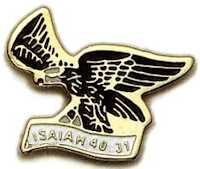 Wings of Eagle Pin Isaiah 40:31