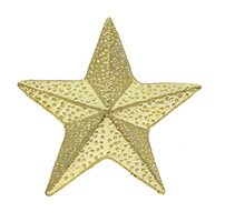 Gold Star Pin Dimensional