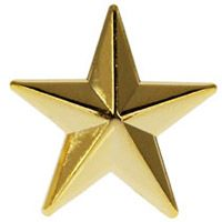 Police or Military 3D Gold Star 9/16 Pin