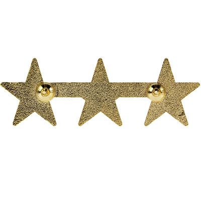 3 star Police or Military Gold Star Pin - back