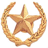 Star and Wreath Award Pin Gold