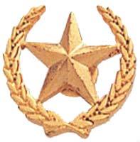 Star and Wreath Award Pin Gold