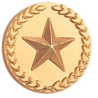 Gold Star with Wreath Pin