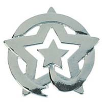 Circled Star Lapel Pins Silver - Pack  of 12