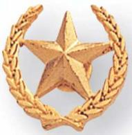 gold star with wreath