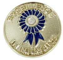 Excellance in Nursing Pin With Stone