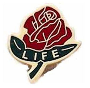 Life Rose Pin Multi colored
