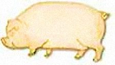 Gold Pig Lapel Pin