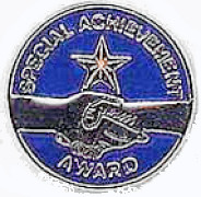 Special Achievement Award Pins