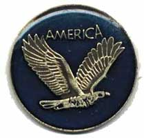 Eagle and America eagle Lapel Pin
