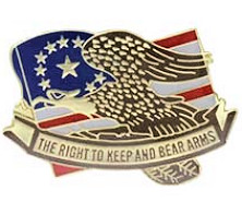 The Right to Keep & Bare Arms USA Flag Pin