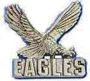 Eagles Team Pin Gold