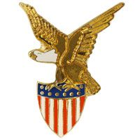 Eagle and American USA Flag Shield Pin