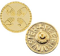 Peer Minister Lapel pins  gold