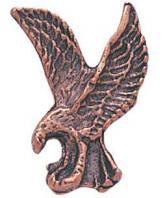 Eagle Pin Isaiah 4031 Pin