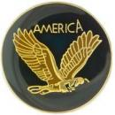 Eagle and America Lapel Pin