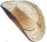 Pony Express Cowboy Hat