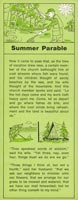 Summer Parable Church Tract (Pkg of 100)