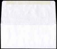 Blank Remittance Long Flap Envelope